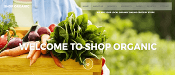 Shop Organic Grocery Store